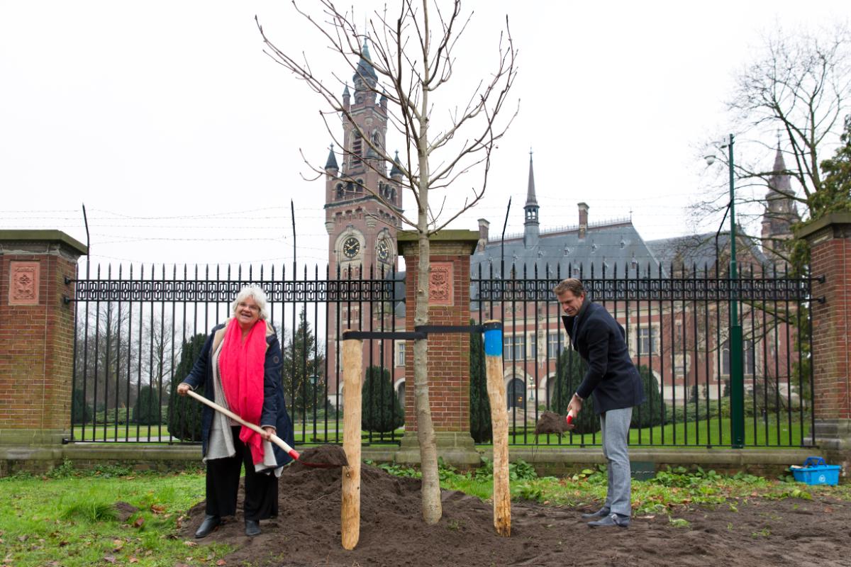 Anne Frankboom geplant bij Vredespaleis