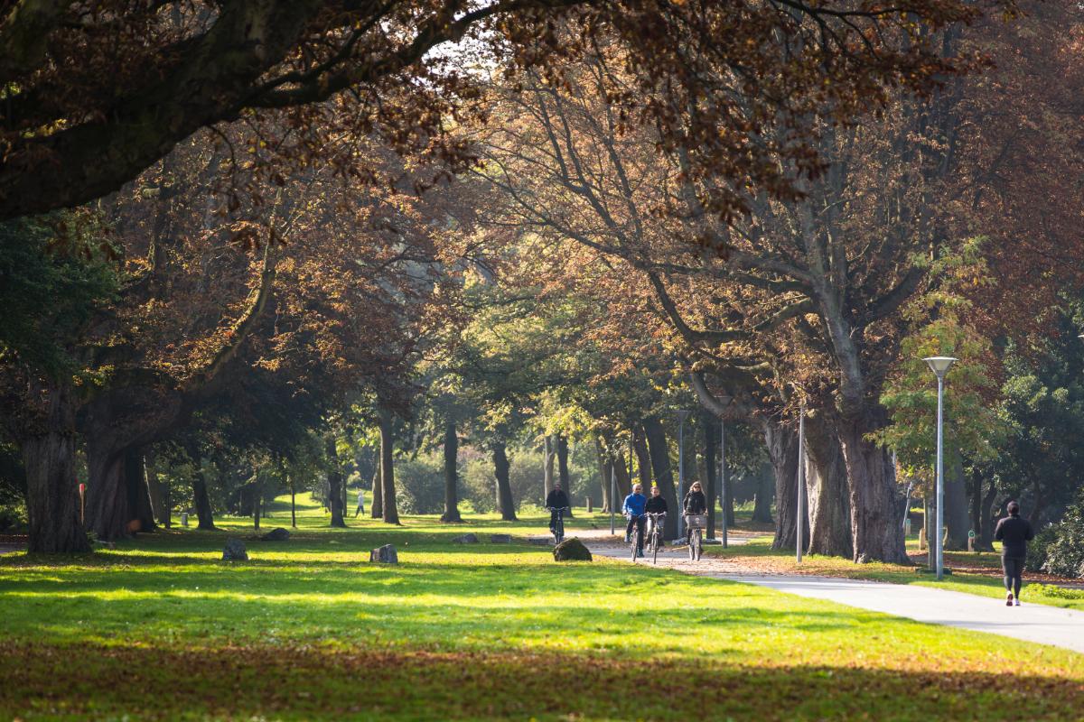 Bomentuin met 695 soorten in Zuiderpark blijft bijzonder